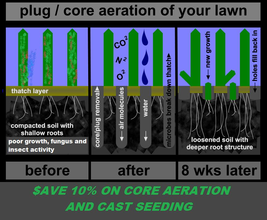 "Core Aeration Avon CT, Farmington CT, Burlington CT, Cheshire CT, Farmington CT, Berlin CT, Kensington CT, Canton CT, Plainville CT, Bristol CT, Southington CT, Plantsville CT ""AERATION"" in New Britain CT, Meriden CT, Farmington Valley Connecticut and Middlesex County."