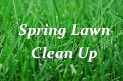Spring clean up clean-up cleanup spring clean companies landscape landscaper CT Landscape co Plainville Bristol Farmington CT Southington Plantsville  Berlin Kensington Cheshire Avon New Britain Meriden Canton, CT Burlington  Wolcott CT Connecticut Cromwell Middletown Barkhamsted Bethlehem Bridgewater Canaan Colebrook Cornwall Goshen Harwinton Northwest Harwinton Kent South Kent CT Litchfield Bantam Morris New Hartford New Milford Gaylordsville Norfolk North Canaan Plymouth Terryville Roxbury Salisbury Sharon Thomaston Torrington Warren Washington New Preston Watertown Oakville Winchester Winsted Woodbury CT