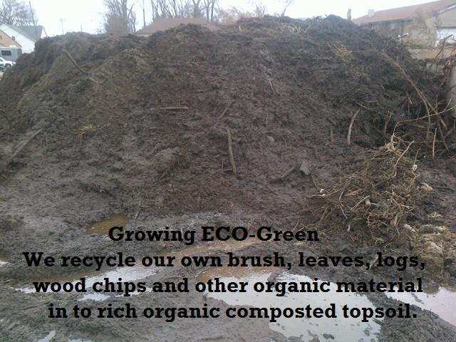ECO-Green Topsoil CT Lawn Care, CT Organic Lawn Care, Shrub Care Seeding Companies Organic Landscapers Organicare Local Lawn Care CO CT lawn companies Safe Lawn Care companies  Lawn Care no chemicals no pesticides pesticide free