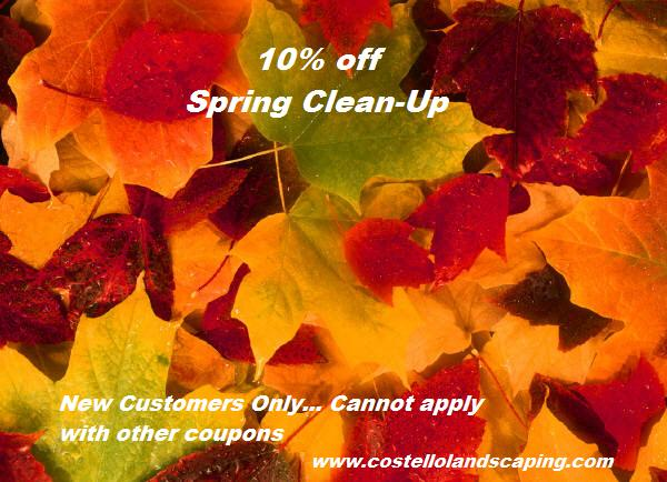 Spring Clean Ups Leaf Clean Up Leaf Removal Landscapers Spring Services Avon CT, Farmington CT, Burlington CT, Cheshire CT, Farmington CT, Berlin CT, Kensington CT, Canton CT, Plainville CT, Bristol CT, Southington CT, Plantsville CT New Britain CT, Meriden CT, Farmington Valley Connecticut Middlesex County.